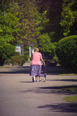 Elderly woman with a walker outdoors. Vertical picture with copy space of a lady using a walking frame with wheels. Фото со стока