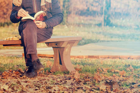 reading a book in an autumn park, senior relax lifestyles (copy space available on the right) Фото со стока