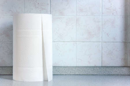 Kitchen paper with copy space. Roll of paper towels