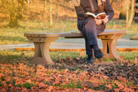 reading a book outside, leisure time for senior people that sitting on a bench in fallen season Фото со стока