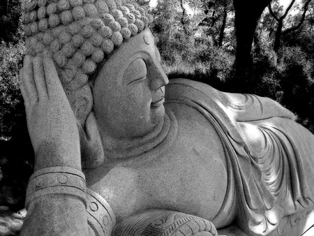 A Buddha statue in a beautiful Oriental garden photo