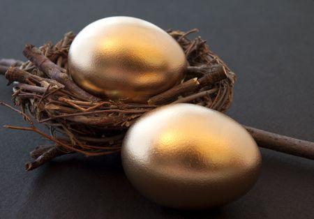 huevos de oro: Esperanzas & sue�os: Huevos de Golden & ramita nido