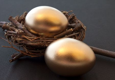 global retirement: Hopes & Dreams: Golden eggs & twig nest