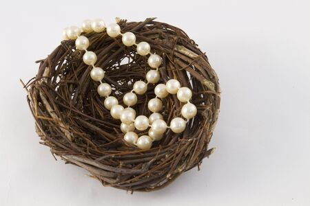 Strand of pearls in brown twig nest reflect a unique nest egg, a special investment