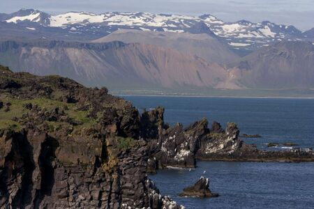 Scenic landscape of northwestern Iceland, alive with breeding birds, pure ocean, and fresh snow; cliffs in foreground in sharp focus and mountains lighter with distance Stock Photo - 7711039