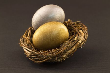 diversification: A silver egg and a gold egg paired in a twig nest are a representation of the carefully diversified nest eggs needed in a modern investment account