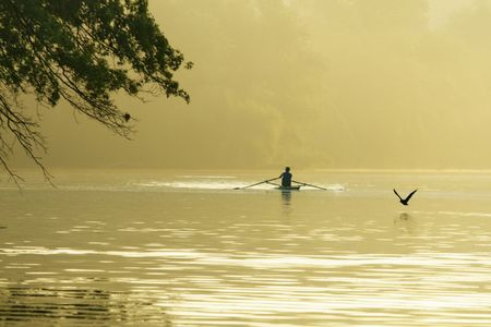 Single crew athlete practices in misty morning sunlight, rowing across lake as bird flies by across the waters of Lake Carnegie, Princeton, New Jersey; side frame of branches of tree; copy space on mist;