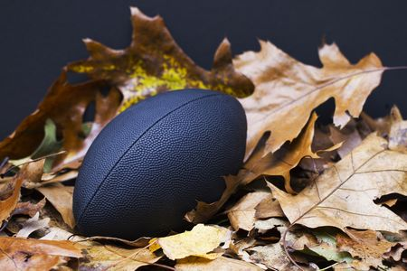 as one: Football sits grandly in colorful autumn leaves, confident as one of autumns favorite sports