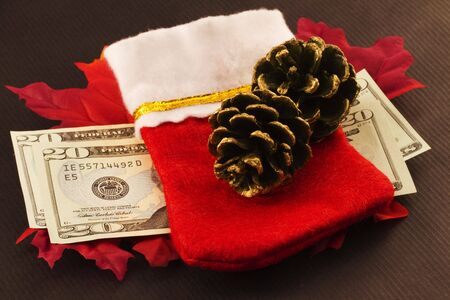 Cash, whether gift, donation, or bonus, is the critical element among Christmas images of red stocking, pine cones, and red leaves Reklamní fotografie