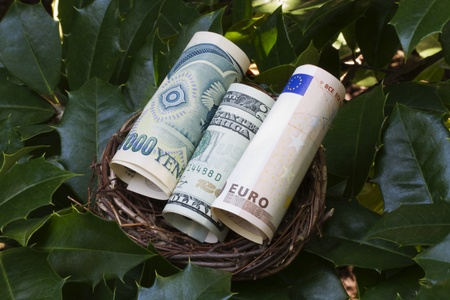 differentiation: Three currencies rolled into a twig nest; Modern nest egg planning has changed to a global, diversified currency and investment strategy