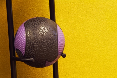 Weighted fitness ball on stand