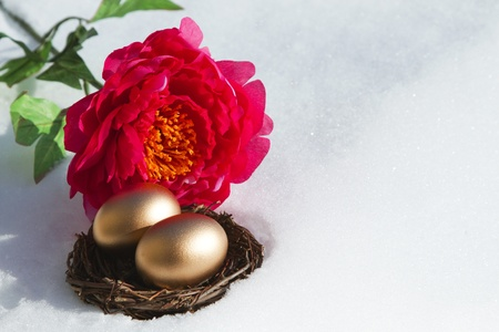 signify: Red blossom placed in juxtaposition with snow and two gold eggs in a twig nest to signify a positive change in conditions, a shift in economic weather;