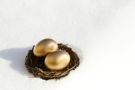 Two, golden eggs in twig nest in a snow bank are at risk in the wintry snow of harsh economic conditions; Stock Photo