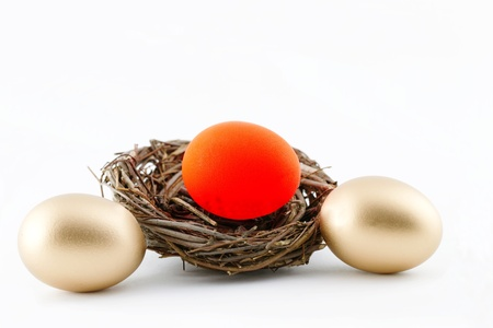 consequences: Financial consequences reflected in red hot, troubled egg in twig nest with two, golden eggs outside of nest; white background;