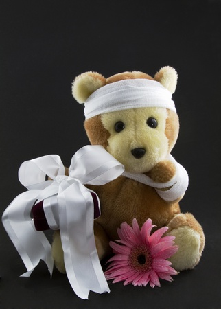 A cranberry velvet gift box wrapped with white ribbon and a pink daisy are placed with a bear wearing gauze around its head and a gauze shoulder sling.