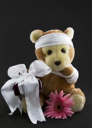 Een cranberry fluwelen geschenkdoos omwikkeld met wit lint en een roze madeliefje worden geplaatst met een beer gaas om zijn hoofd en een gaas schouderriem.