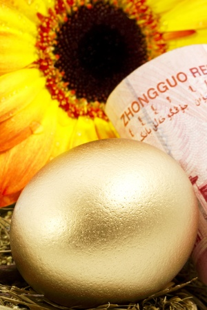 Gold nest egg sits with yuan currency with brightly colored sunflower behind both egg and money.  Sunflower, gold egg, and yuan currency reflect strong growth in China and an increasing middle class, eager to save for their futures and old age.