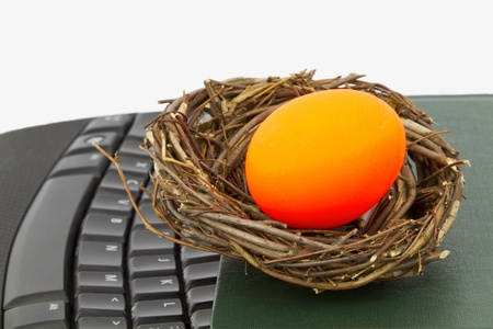 ledger: Symbolic red egg sits in nest on ledger and keyboard indicating a modern financial crisis, such as a government debt issue, affecting investments and business strategies. recession, unemployment, crash, market, stock,
