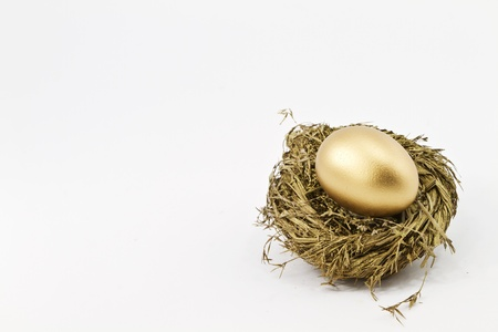 Hopeful, gold financial nest egg sitting in glittering gold straw nest in a metaphoric image of smart success; copy space; white background;