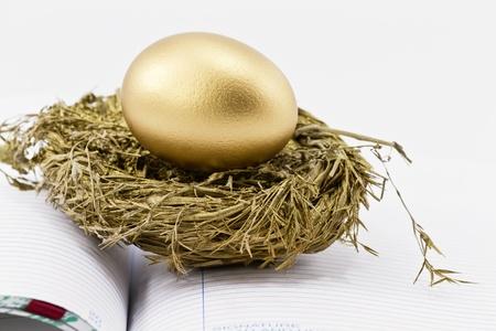 On an open ledger, a gold nest egg sits in sparkling gold nest; selective focus on nest egg;