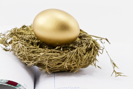 On an open ledger, a gold nest egg sits in sparkling gold nest; selective focus on nest egg;