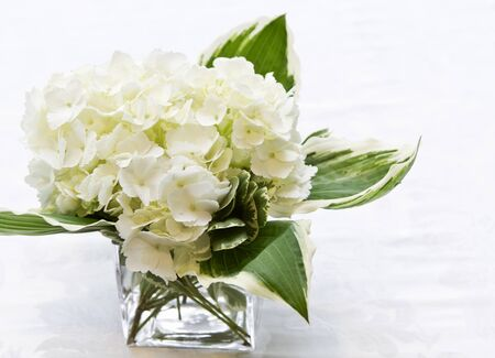 offered: Simplicity offered in simple, white flower arrangement