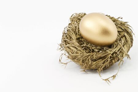 Gold nest egg against white background; horizontal with copy space to left.   Stock Photo