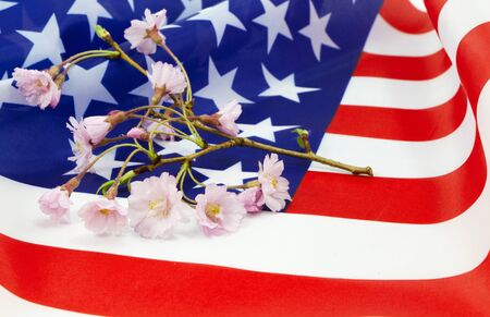 renewal: Cherry blossom sprig, a symbol of beauty, spring, and renewal, placed on an American flag, a national symbol.  Stock Photo
