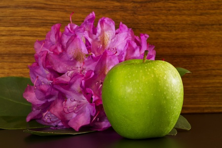 broad leaf: Green apple placed in front of broad leaf rhododendron blossom.  Symbols of spring, learning, renewal, education, success;