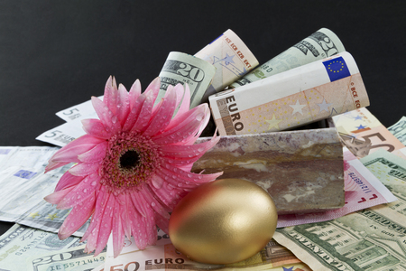suggests: Pink daisy with fresh dew placed with gold egg on multiple, global currencies against black and in marble box reflect strong, worldwide financial success  Flower in pink suggests feminine involvement and leadership   Stock Photo