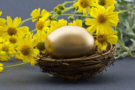 suggests: Spring flowers behind gold nest egg suggests recovery, success, and fresh financial strategies. Yellow daisy-like flowers are desert brittle bush, Encelia farinosa.   Horizontal image with gray background.