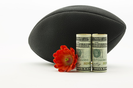 American currency with red flower in front of black football; white background and copy space;