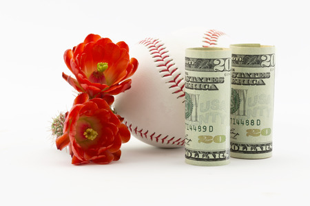 spring training: Two baseballs placed with American currency and red cactus flowers on white background.  Spring training for major league baseball has a series of practice and exhibition Cactus League games.  Sites include locations such as Phoenix in Arizona.