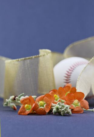 Orange mallow blossoms in shallow depth of field focus that holds gold ribbon and baseball behind. Copy space on blue of vertical image.