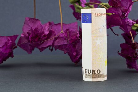 Dark pink, almost red, bougainvillea, a thorny ornamental vine, behind upright Euro currency reflects financial hopes in a troubled time for the eurozone. photo