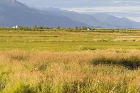 birding: Autumn view across golden marsh grasses of Potter Marsh, an important birding refuge, in Anchorage, Alaska. Stock Photo