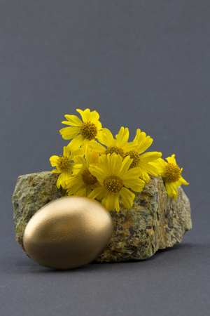 success security: Gold nest egg in front of natural rock and flowers with yellow petals against a sophisticated, simple gray background.  Copy space available.  Symbols of success, security, and beauty.
