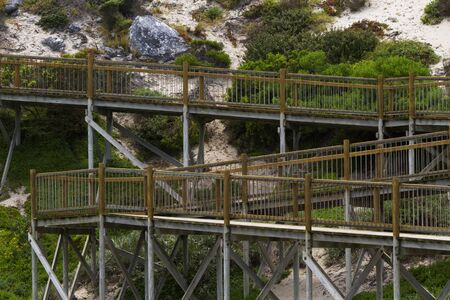 kangaroo island: Comfortable, wood boardwalk at Seal Bay Conservation Park on Kangaroo Island, South Australia, allows for ease of viewing a colony of Australia sea lions Neophoca cinerea. Stock Photo
