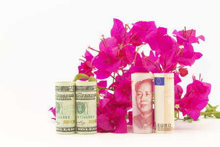 economic recovery: Three currencies, American dollars, China yuan, and European Union euro, in front of red bougainvillea reflect economic recovery hopes for fresh global growth.