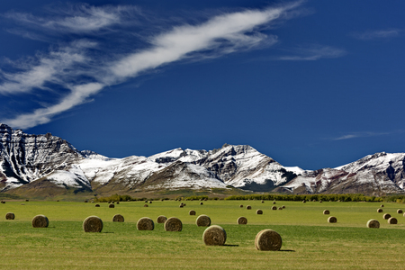 Peaceful Alberta, Canada farm range with rolled hay bales, snowy Canadian Rockies, and beautiful sky.  Horizontal landscape with no people. Location is Pincher Creek near Waterton Lakes National Park. Date is September 13, 2016. Stock Photo