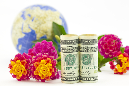 lantana: Elegant photograph of business concepts of international markets, business, industries, and profits seen in symbols of American dollars, globe, and flowers on white background with copy space.  Stock Photo