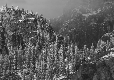 Black and white photograph of snow on trees and mountains of Bow Valley Provincial Park in Alberta, Canada.  Horizontal landscape taken near Spray Valley Road on September 15, 2017. Stock Photo