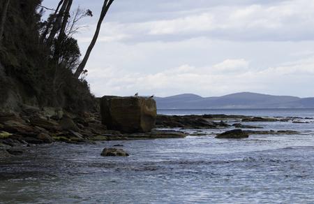 Coal Point Beach at Adventure Bay Coastal Reserve on Bruny Island, Tasmania Reklamní fotografie