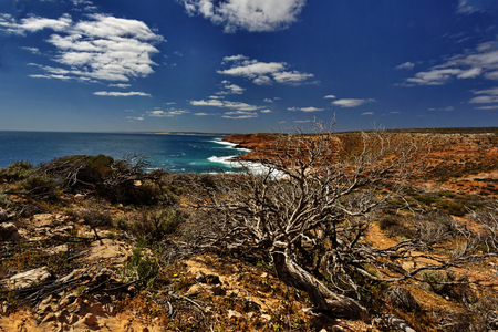 Gnarled and rugged coast of Kalbarri National Park in Western Australia Standard-Bild