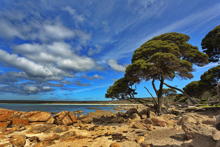 Beauty in nature with rocks, sea, trees, and sky at Bunker Bay on Cape Naturaliste in Western Australia