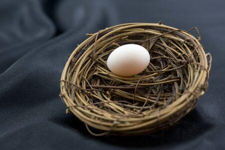 Elegant sophistication of black background enhances small nest egg as wise symbol of ordinary investment beginnings.