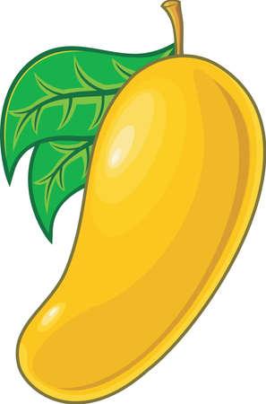 mango: fresh orange mango with green leaves