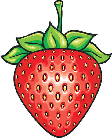 fresh red shiny strawberry with green leaves Vector