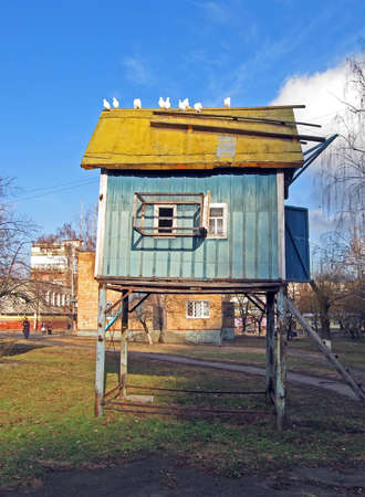 small blue wooden dovecote house on metal pilones. building with few windows and white pigeon on the roof. blue sky with white clouds, urban building details