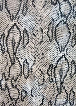 abstract snake texture closeup, danger pattern details photo